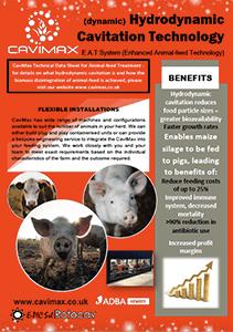 Hydrodynamic cavitation for enhanced animal feed technology