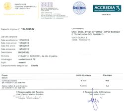 Analysis of biodiesel from palm oil - ROTOCAV - Hydrodynamic cavitator