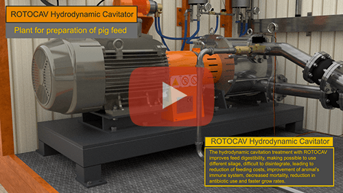 Video of ROTOCAV hydrodynamic cavitator for the preparation of pig feed