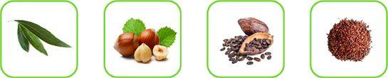 Alcuni esempi di matrici vegetali processabili con il cavitatore idrodinamico ROTOCAV nel settore della nutraceutica e dell'industria alimentare
